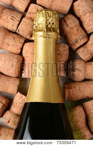 High angle closeup shot of a champagne bottle laying on its side on top of old used corks. Vertical format on a rustic white wood background.