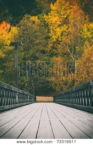 Fall colors by the bridge