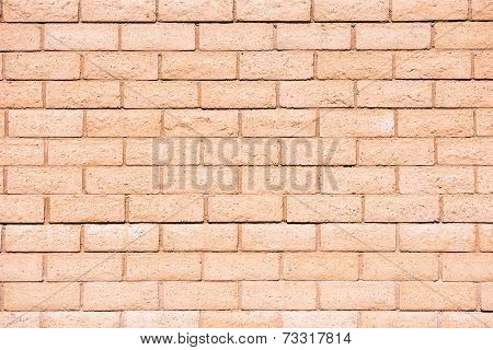 Pinky Brick Wall Backdrop