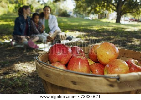 Basket of apples with family in background