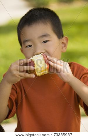 Asian boy eating apple