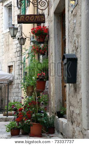 KOTOR, MONTENEGRO - JUNE, 10: Mediterranean house with flowers, on June 10, 2012 in Kotor, Montenegro