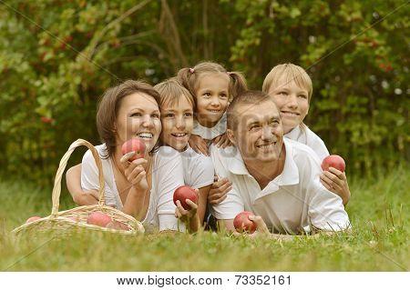 Family is having picnic