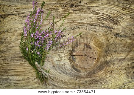 Common Heather Flowers On Wooden Surface