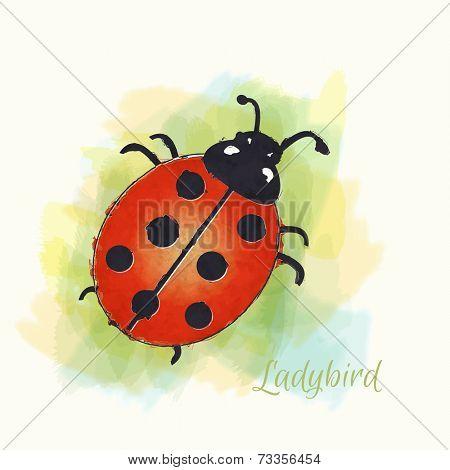 Watercolour illustration of a ladybird.