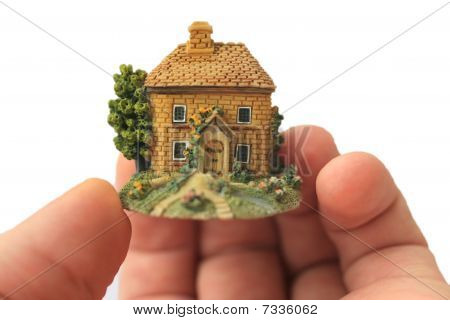 House In  Palm