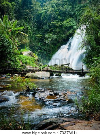 Tropical Rain Forest Landscape With Jungle Plants, Flowing Water Of Pha Dok Xu Waterfall And Bamboo