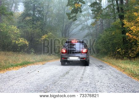 Car on a road in the forest in autumn.