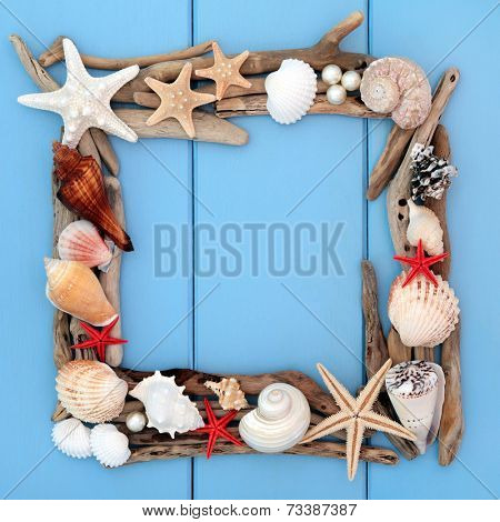 Sea shell selection and driftwood forming a frame over wooden blue background.