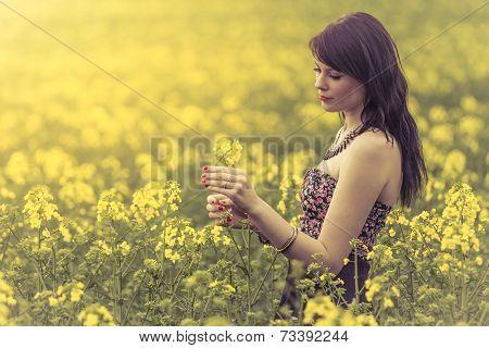 Beautiful Woman In Meadow Of Yellow Flowers Holding Flower