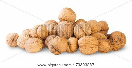 Many Walnut Piled Up