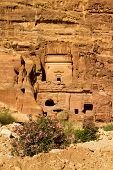 stock photo of camel-cart  - An ancient monument carved in stone in the Nabatean city of Petra Jordan - JPG