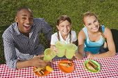 image of pre-adolescent child  - Mixed Race family toasting at picnic table - JPG