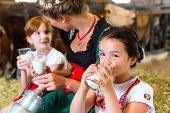 stock photo of hay bale  - Bavarian mother sitting with children in cowhouse on hay bale drinking fresh milk  - JPG