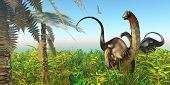 pic of apatosaurus  - A Pteranodon flies past two Apatosaurus dinosaurs in a lush Cretaceous jungle - JPG