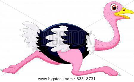 Cartoon ostrich running