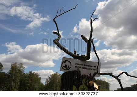 Poster movement of the defenders of the Khimki forest near felled in a forest glade
