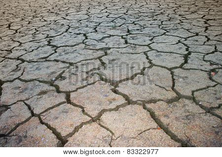 Dry and cracked land from natural disaster
