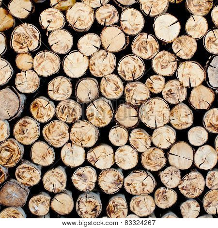 Timber For The Background