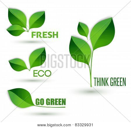 Eco text with leaves. Ecology concept. Think green, go green and fresh