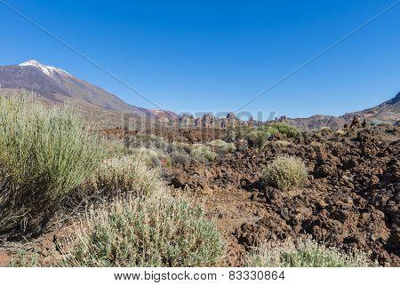 Lava Field With El Teide