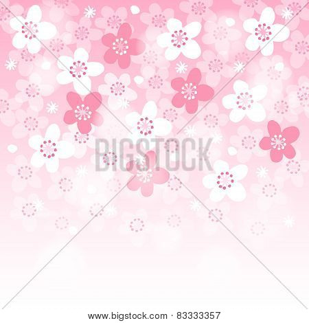 Spring Background With Blooming Japanese Cherry Tree, Vector