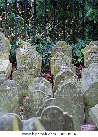 Cemitério de animais de estimação