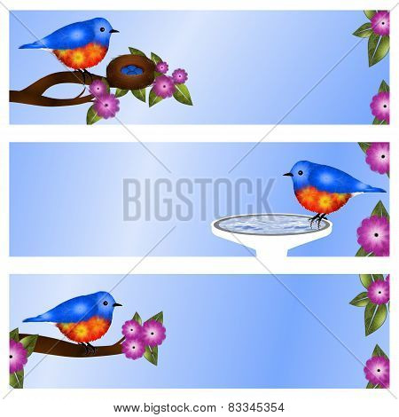 Set of 3 Bluebird Address Labels