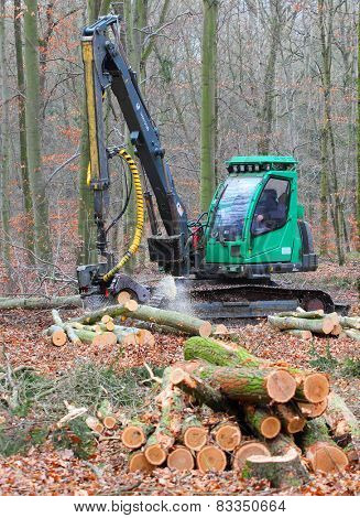 PILSEN CZECH REPUBLIC - FEBRUARY 19, 2015: unidentified lumberjack with modern harvestor working in a forest. Forestry is Czech's traditional industry with a very long history.