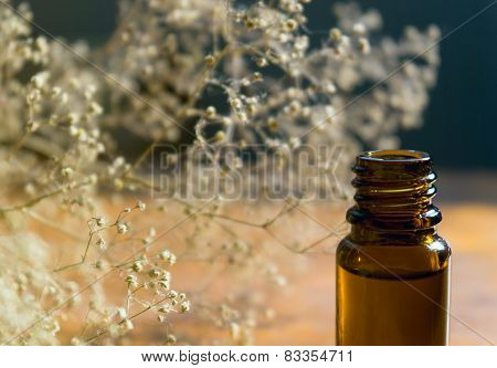 Essence bottle and white flowers