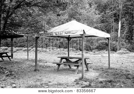 Old wooden gazebo under the woods. Black and white photo