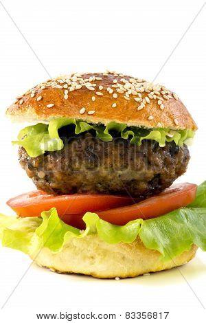 Homemade Hamburger.