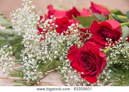 Roses On Baby's Breath