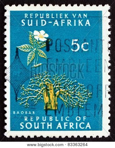 Postage Stamp South Africa 1961 Baobab Tree
