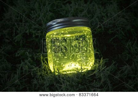 Blue Glowing Jar On The Moss