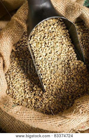 Raw Coffee Beans Seeds In Bulk Burlap Sack Production Warehouse