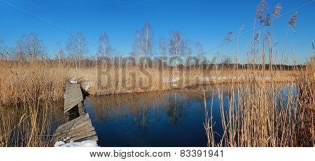 Moor Lake With Old Rotten Bridge, German Wilderness