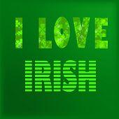 stock photo of irish  - I love irish lettering - JPG
