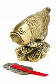 picture of dragon-fish  - Gold fish - JPG