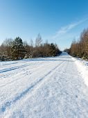 picture of snowy-road  - snowy winter road with tire markings and blue sky - JPG