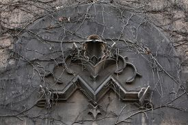 stock photo of monogram  - Old monogram M overgrown with climbing plants at the 19th century building in Berlin - JPG