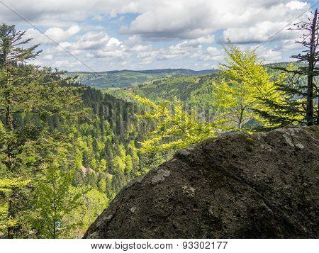 Overlooking Hills In France