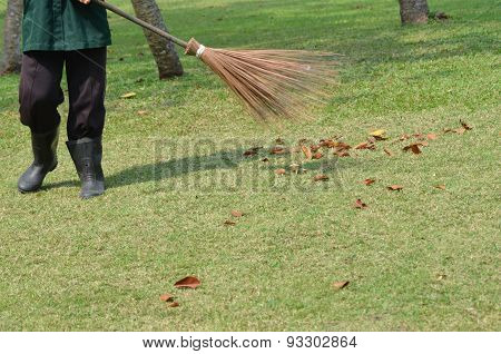 Man with rake collects leaves