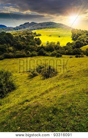 Agricultural Field On Hillside Meadow At Sunset
