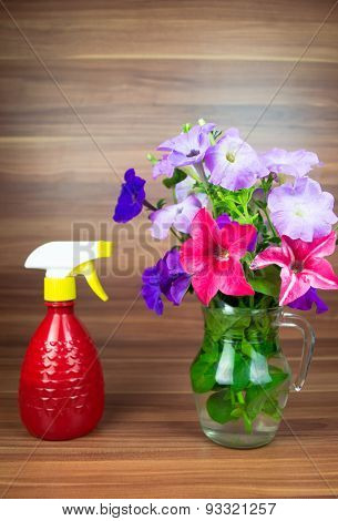 Colorful petunia blooms in a glass pitcher with watering can