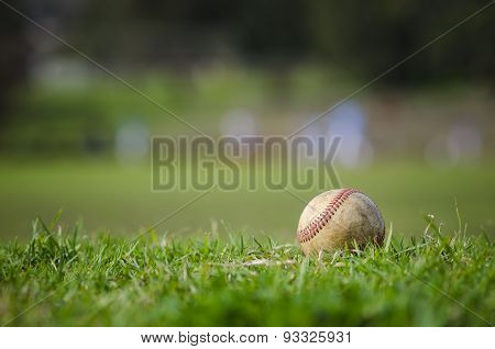 Used Baseball On Fresh Green Grass