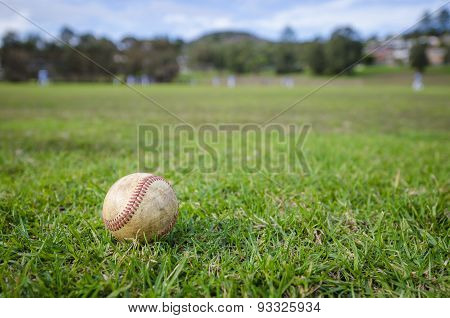 Used Baseball Laying On Fresh Green Grass