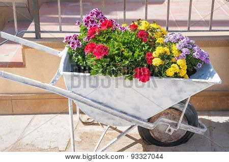 Flowered push cart
