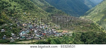 Bayyo Rice Terraces And Mountainside Village