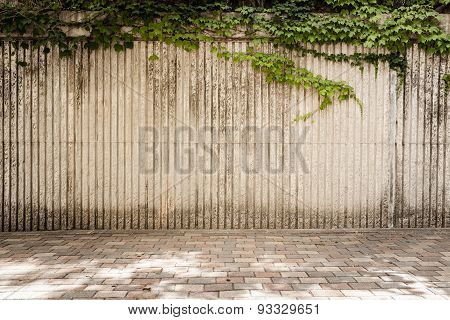 Vertical Grooves With Ivy